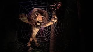 Madagascar Ride in Universal Studios Singapore (USS)