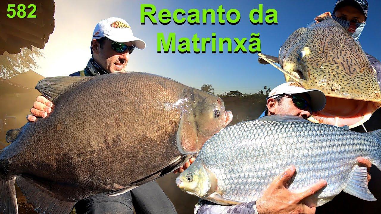 Recanto da Matrinxã - Grandes peixes e surpresas com os amigos paulistas em Goiás - Programa 582