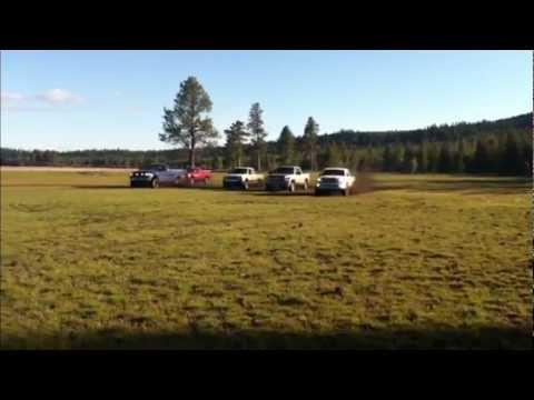 Stock Truck 4x4 Race