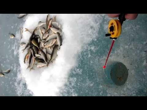 Рыбалка Забайкалье 75 регион