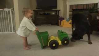 Rottweiler Attacks Baby Toy