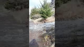 Rotura en el caño del Acueducto Río Grande