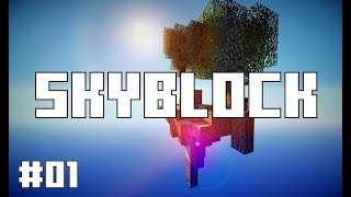 Minecraft Skyblock and BedWars