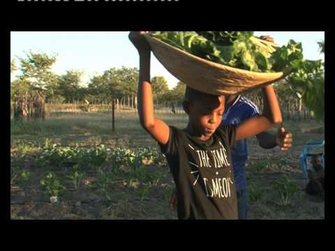 Zimbabwe Minister urges Namibian farmers to sell excess land - NBC