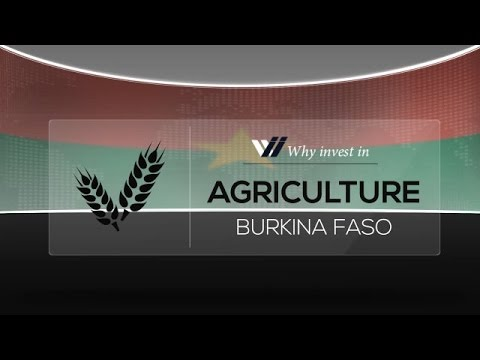 Agriculture  Burkina Faso - Why invest in 2015