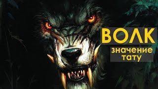 Значение тату волка - для девушек и парней - Волк воющий на луну, Стая волков