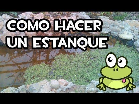 Como hacer un estanque facil y barato youtube for Como hacer un estanque economico