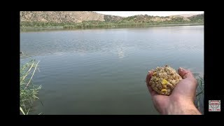 Şamandırayla Sazan Kadife İsrail Sazanı Avı Carp Tench Carassius Fishing 2 Bölüm Part 2