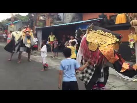Barong Bangkung Mepetuk