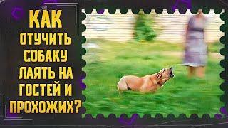 Как отучить собаку лаять на гостей и прохожих на улице (Эмма)