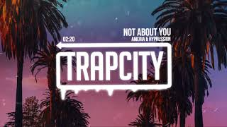 Ameria & HYPRESSION - Not About You