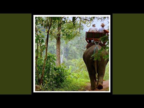 African Journey – Serengeti