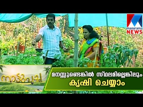 Farming in 8.5 cent | Manorama News | Nattupacha