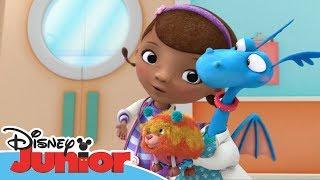 Dottoressa Peluche - Ospedale dei giocattoli - I cuccioli terapeutici - Dall'episodio 103