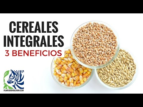 3 BENEFICIOS DE COMER CEREALES INTEGRALES | PR 283