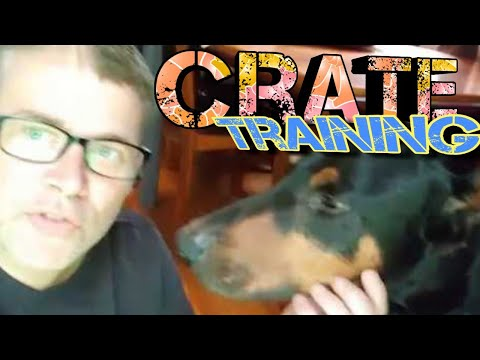 Crate Training Doberman Pinscher - How to Kennel Train your Puppy or ANY DOG