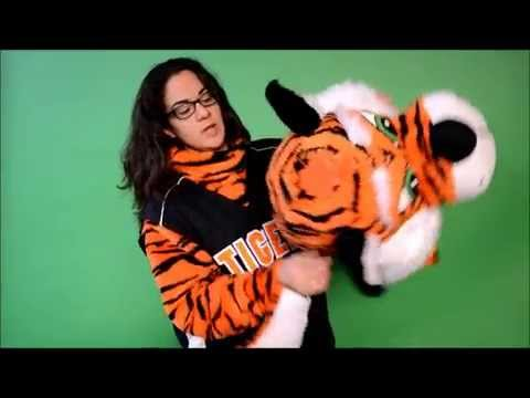 Tiger mascot costume features by AMAZING!! Mascots