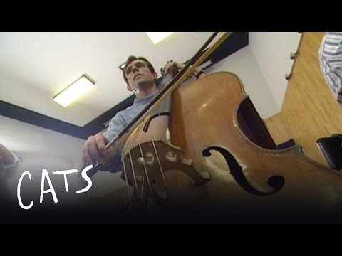Cats the Musical - Making Memory