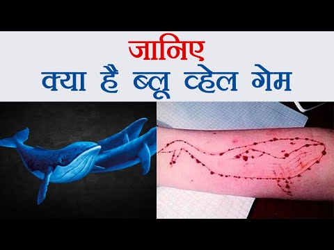 Blue Whale Game देता है Suicide...