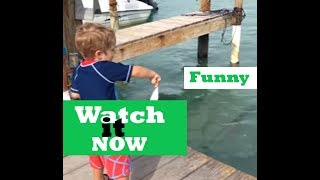 Cute Funny - Animals and Kids Compilation - Watch it Now
