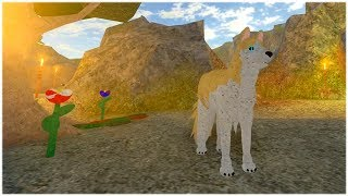 A WOLVES LIFE 2 SHOWCASE IN ROBLOX | RADIOJH GAMES