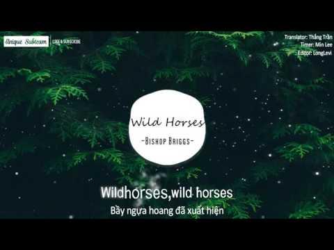 [Lyrics + Vietsub] Bishop Briggs - Wild Horses