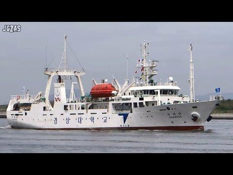 SAEBADA Training ship 練習船 大阪港入港 2014-JUL