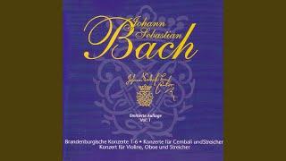 Brandenburgisches Konzert Nr. 4, G-Dur, BWV 1049: Andante