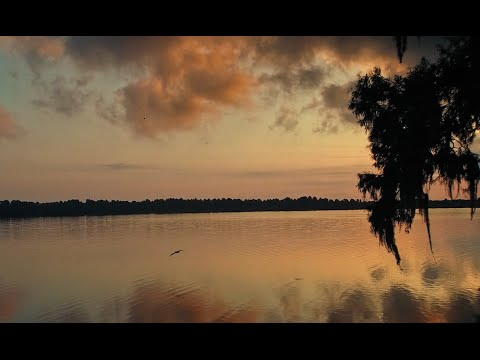 Visit Central Florida | A 4K Film by Indie Atlantic Films