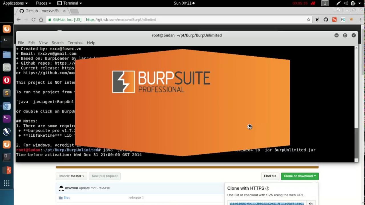Burp suite professional 16 cracked