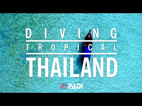 Crazy, Awesome Dive Lifestyle | Diving Tropical Thailand 🌴