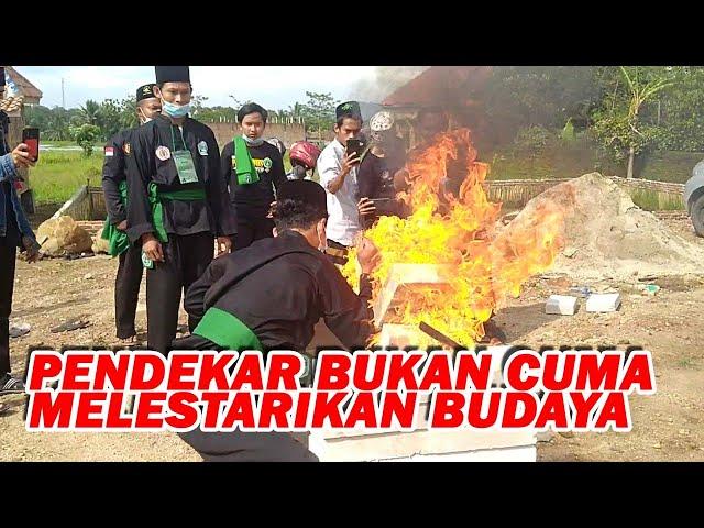 Pagar Nusa Siap Jadi Garda Terdepan Bela Bangsa Bela Agama Bela Ulama