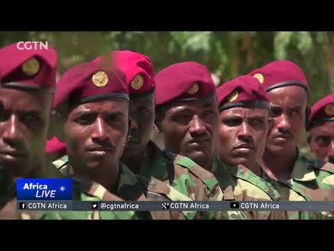 Somalia Security: Ethiopian troops join major offensive against al-Shabaab