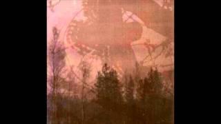 Inmitten Des Waldes - Sternennacht