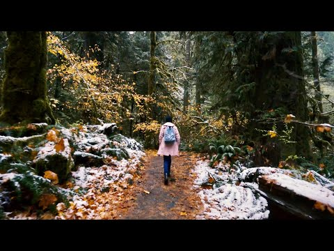 Washington Travel Film