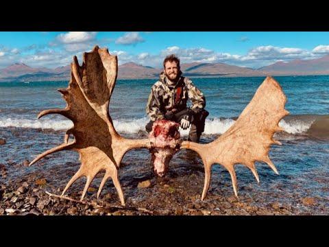 "UNBELIEVABLE: 65"" DIY Alaskan Moose on Day 9 – Limitless 75"