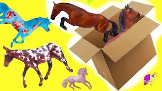Box of New Horses ! Traditional, Club, Freedom Series  Breyer Horse Haul Video