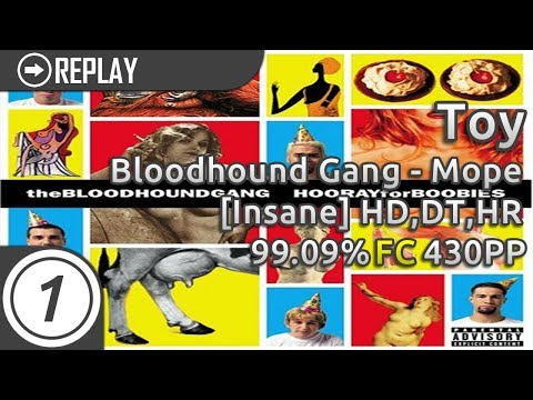 Toy   Bloodhound Gang - Mope [Insane] +HD,DT,HR FC 99.09% 430pp #1