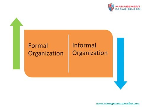 group development the formation of informal work Group development: the formation of informal work groups essay - group development: the formation of informal work groups informal groups have a powerful influence on the effectiveness of an organization, and can even subvert its formal groups.