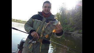 Чем не трофей? Осенняя рыбалка 2018