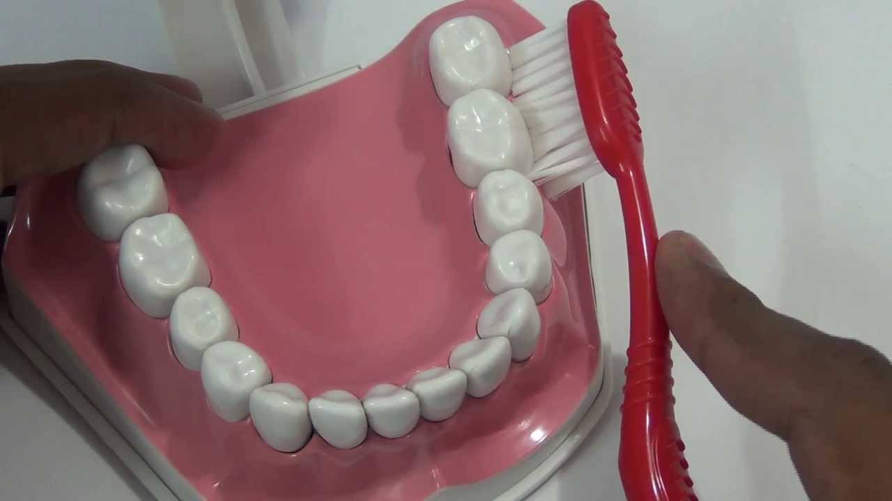 Brushing your teeth has never been so good - 5 9