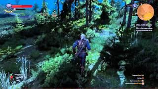 Ведьмак 3 - Мастер-бронник и заказ на Архигрифона