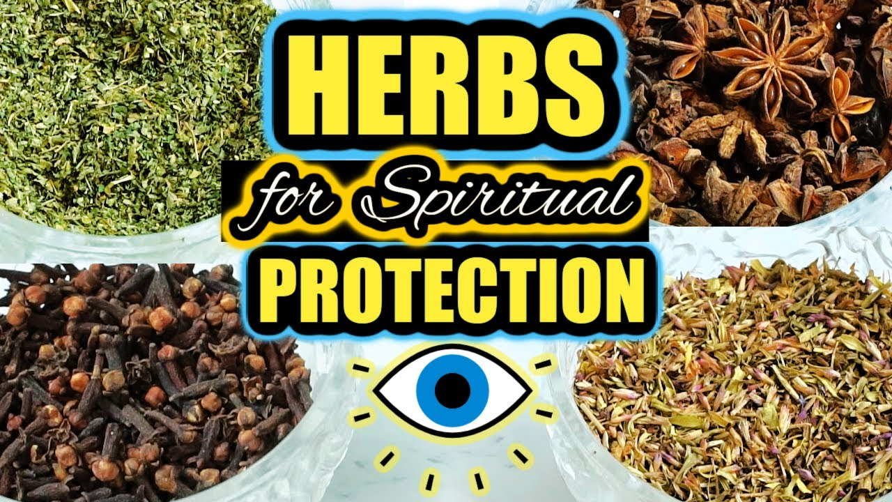 Download 🧿 HERBS FOR SPIRITUAL PROTECTION 🌿 Evil Eye, Negative Energy, Fighting, Arguments, Etc 🧿