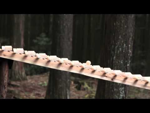 Forest Xylophone Plays Bach ~ 森の木琴 [HD]