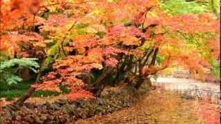Autumn (Roger Eno)