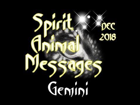 gemini-animal-spirit-message-december,-2018
