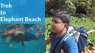 Trek To Elephant Beach. Havlock Island Trekking