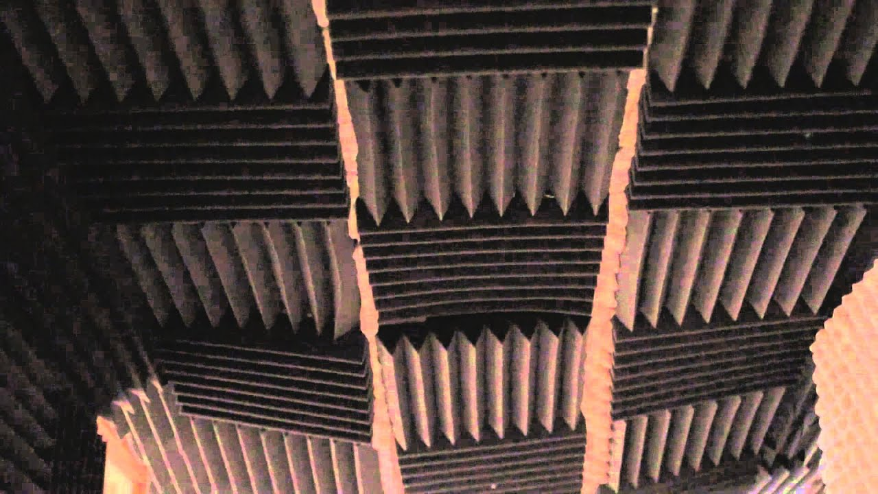How To Soundproof A Wall From Barking Dog Audio Sound