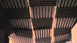 How to Soundproof a Wall From a Barking Dog : Audio & Sound
