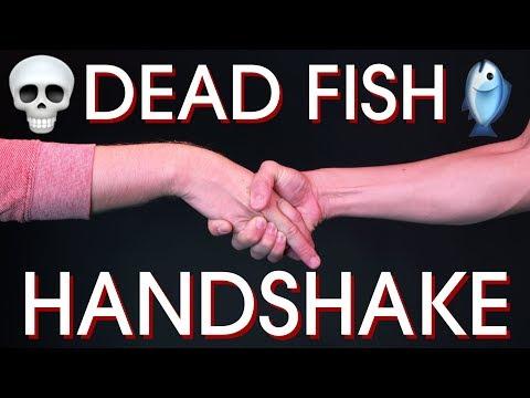 HANDSHAKE FAIL SONG // Garbage Songs #03